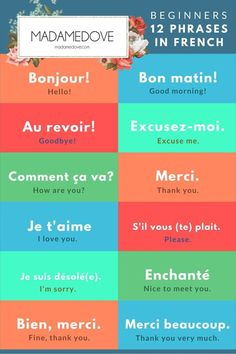 12 phrases in French for beginners// 12 phrases en français pour les débutants. madamedove.com