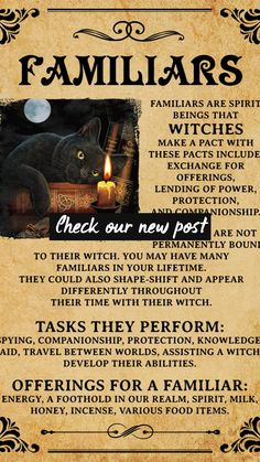 Hexing Because Murder Is Wrong Wicked Witch Halloween Art Witch and Moon art Witch With Brooms Print Halloween Poster