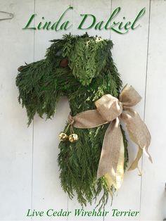 Live cedar German Wirehair Terrier. My first dog wreath. Facebook: Horse Head Wreaths by Linda Dalziel