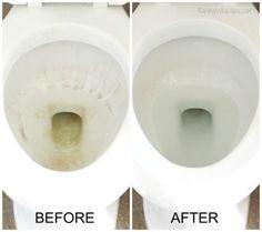 diy natural toilet cleaner 6 bathroom toilet cleaning tips, bathroom ideas, cleaning tips, how to, This DIY Lemon Rosemary Toilet Cleaner WORKS