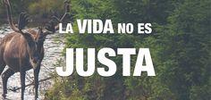 La vida no es justa: http://www.30kcoaching.com/la-vida-no-es-justa-audio-reflexion-por-sandra-burgos/