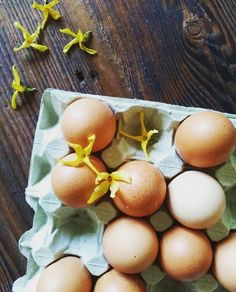 easter and eggs and farm living and slow living and spring Farms Living, Slow Living, Eggs, Easter, Spring, Easter Activities, Egg, Egg As Food