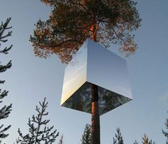 Terrific Treehouses: 10 Brilliant Topiary Masterpieces Harad's Reflective Tree Hotel