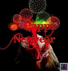 Happy New Year 2018, Say Hi, Neon Signs, Halloween, Spooky Halloween