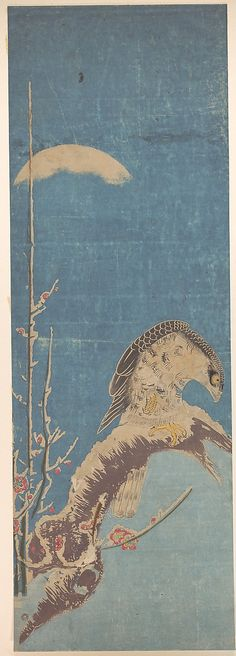 A Hawk Perched on a Snow-covered Pine Tree  Isoda Koryûsai  (Japanese, 1735–1790)  Edo period (1615–1868), probably 18th century, Japan / Hand-colored print (ishizuri-e); ink and color on paper