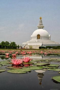 World Peace Pagoda at the birthplace of Buddha, Lumbini, Nepal