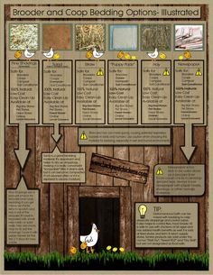 Options for bedding material in chicken coops