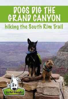 It's common knowledge among pet travelers that our national parks are not pet friendly. We experienced that last summer at Yellowstone and the Grand Tetons. Generally, your pets are allowed outside your vehicle only in paved parking lots and some campgrounds. The trails are usually off limits. But things are different at the South Rim …