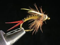 Neon Prince nymph. For more info on fly reels and fly fishing check out www.theflyreelguide.com  Don't forget to support and check out the publisher/Pinners of this photo.thx