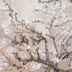 cinque-del-mattino: Almond Branches In Bloom, San Remy | Vincent Van Gogh