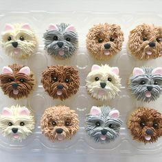 Puppy Cupcakes, Animal Cupcakes, Cake Decorating Videos, Cake Decorating Techniques, Buttercream Cupcakes, Cupcake Cakes, Cake Icing Techniques, Cupcake Videos, Patterned Cake