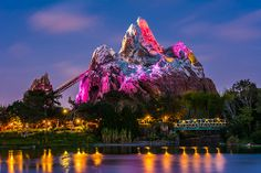 #Disney Animal Kingdom Expedition Everest