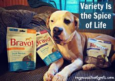 Variety Is the Spice of Life | Bravo Dog Treats Giveaway http://www.mypawsitivelypets.com/2015/12/variety-is-spice-of-life-bravo-dog.html