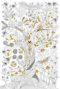 """PETER PAUPER PRESS: Colour your own poster """"Tree of Life"""" - Green Tube"""