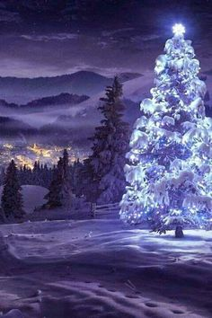 The Love of a White Christmas. Birch Creek Studio.