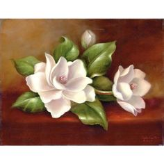 magnolias flowers - Google Search