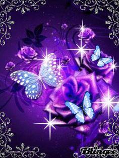 Fancy butterfly roses