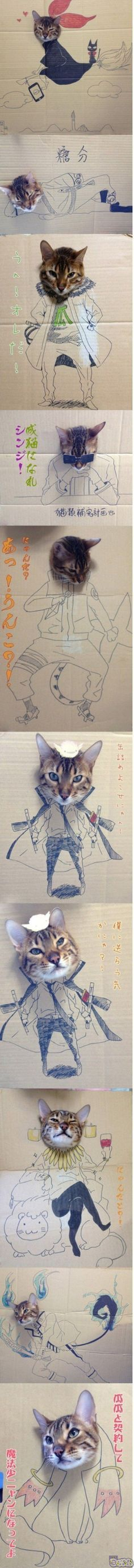 Awesome cat illustration. I have no idea what it says; but the drawings are awesome!