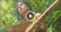 https://genial.guru/video/esta-es-la-cancion-mas-relajante-que-haya-sido-compuesta-369160/  #ElCondorPasa #Music