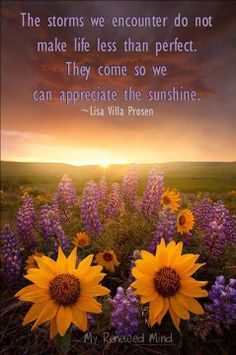 inspirational thoughts/sunflowers