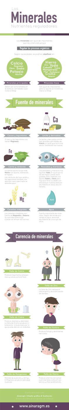 Infografía sobre las funciones de los minerales en el cuerpo
