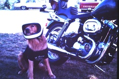 My son Ben, ready to ride! 1977 Harley Sportster
