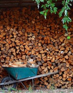 Your trusted firewood and tree service company in the Minneapolis area   www.ronstreeserviceandfirewood.com   #trees