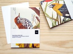Envelopes made from bird encyclopaedias.