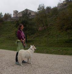 Alcuni protagonisti del dog walking a Ragogna