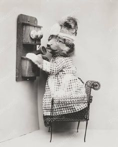 Original vintage old photos reproduced into contemporary prints. All photographs are chemically processed in photo labs and in great condition. Puppy On The Telephone 1914 8x10 Reprint Of Old Photo Pu