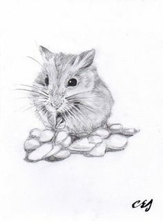 New A5 Black White Art Print - Cute Hamster - Drawing, Sketch - Great Gift Idea | eBay