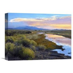 Global Gallery Rio Grande and the Sangre De Cristo Mountains Colorado Wall Art - GCS-396436-1216-142