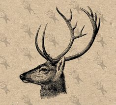 Vintage image Deer Head Reindeer Instant Download Digital printable retro picture clipart graphic fabric transfer burlap art print HQ 300dpi by UnoPrint on Etsy