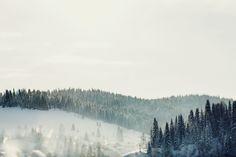 Здесь деревья покрыты инеем, морозный воздух щиплет щеки, окружающие пейзажи заставляют сердце радостно трепетать