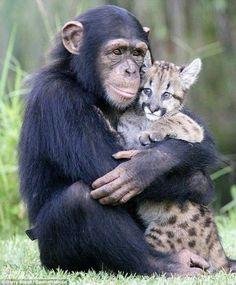 I wanna love you and hug you and sqeeeeeze you!