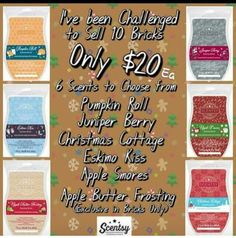 November only!! Shop online now at ashleyjordan9390.scentsy.us
