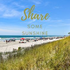 Share Some Sunshine! Wish You Are Here, Vacation Rentals, Sunshine, Beach, Water, Outdoor, Gripe Water, Outdoors, Seaside