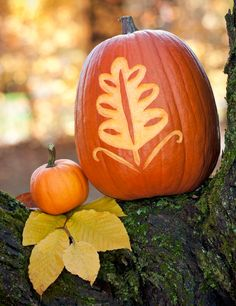 Skip the basic jack-o'-lanterns! Use these downloadable patterns to carve pumpkins that add fall flair to your front entry.