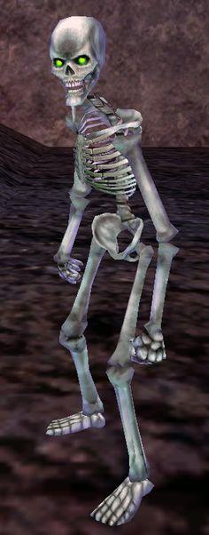 everquest cyclops is watching … you ! | everquest pinterest loot, Skeleton