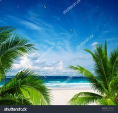 Beautiful Beach And Tropical Sea Стоковые фотографии 150636551 : Shutterstock
