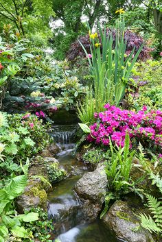 Idea for water feature, small trickle flowing down through planting and rocks on the mound. (Use more naturalistic planting scheme).