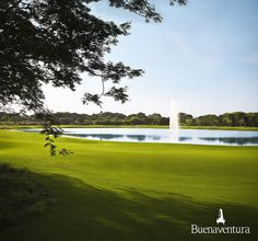 #Golf Nicklaus Design - #Buenaventura, #Panama