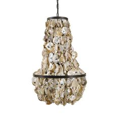 The World Is Your Oyster Chandelier