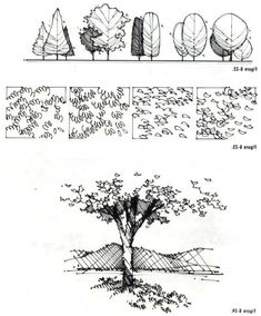 Tree photoshop watercolor trees tree textures architecture graphics landscape drawings architecture sketch landscape drawings 63 drawing architecture sketches texture 50 ideas for 2019 drawing Landscape Architecture Drawing, Architecture Sketchbook, Landscape Sketch, Architecture Graphics, Landscape Drawings, Landscape Design, Landscape Bricks, Computer Architecture, Plant Sketches