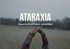 Ataraxia: serenidad Unusual Words, Weird Words, Rare Words, New Words, Cool Words, Pretty Words, Beautiful Words, Spanish Words, Spanish Practice