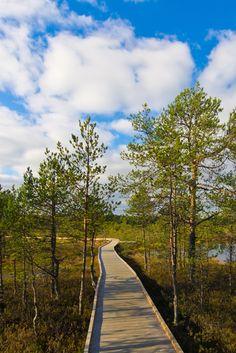 Parque Nacional de Lahemaa en viaje Vihula Estonia