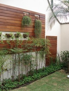 Painel madeira + plantas