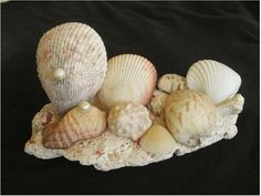 As a transplanted to the Caribbean painter of Cape Cod and Nantucket, I have found new inspiration in the magnificent seashells and corals tossed up from the sea begging to become sculpture.  My new work, ready to bring the seashore to you, wherever you are. is available at my shop on Etsy, Traveling Fashionista.