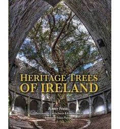 Trees are one of Ireland's most precious pieces of heritage, remarkable for many reasons. Illustrated with fine photography, these pages present a fascinating world of trees unique to Ireland with connections dating back over thousands of years.
