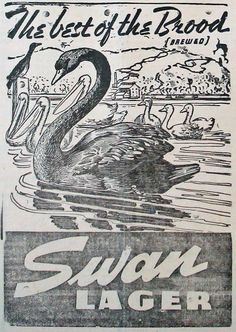 "April 1942 advertisement for Swan Lager beer with a clever play on words... ""The best of the Brood (brewed) - Swan Lager"""